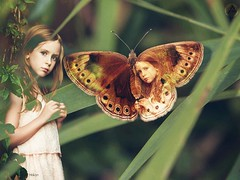 Good morning happy day my friends   #photography #nature #butterfly #edit #art #collage #girl #mask #beautiful #sweet #cute #portrait #artwork #freeart #photodesign #edited #illustration #poster #people #petsandanimals (mrbrooks2016) Tags: illustration beautiful freeart collage mask photography girl artwork edited photodesign sweet petsandanimals nature cute art portrait butterfly edit poster people