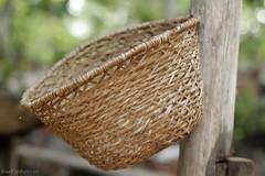 Cesto Indígena (Bert'sPhotos) Tags: am artesanato manaus amazonas amazônia florestaamazônica artesanatoindígena casadocaboclo amazonecopark