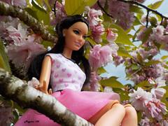Annika (Mgr  ) Tags: doll annika barbie raquelle
