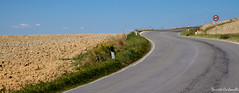 Val d'Orcia - Route SP146 (carbonelli93) Tags: street strada route val tuscany pienza toscana dorcia orcia