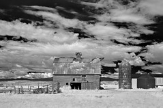 down on the farm - infrared (eDDie_TK) Tags: rural ir colorado weld farming co infrared farms rurallife ruralliving weldcounty weldcountyco johnstownco