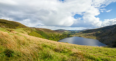 Lough Tay (HildaCS) Tags: lough tay wicklow ireland