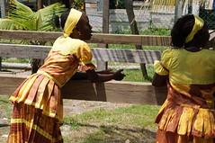 DSC02103 (numb3r) Tags: belize btb belizetourism wildlife rainforest mayan temples jungle belizezoo placencia belizecity authenticbelize tapir tucan