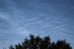 Noctilucent clouds or Night clouds (Ardeola) Tags: clouds meteorology noctilucentclouds nightclouds meteorologi nattlysandemoln