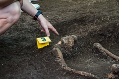 Exhumación en El Pando (León) (14)