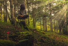 Woodsman Yogi (PierrePelli) Tags: yogi yoga meditation forest mushroom red green sun light strange weird cosmic
