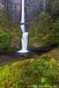 Multnomah Alone (Jared Ropelato) Tags: park bridge jared green nature landscape photography moss spring outdoor environmental falls photograph ferns enviro multonomah 2013 ropelato ropelatophotography