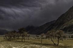 Nubra Valley (GAURAV SRIVASTAVA a.k.a. gauravkun) Tags: india storm dessert sand valley kashmir leh ladakh nubra gauravkun gauravsrivastava