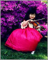 Clara's violin