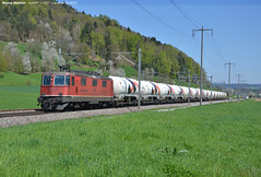 SBB Re4/4.11324 (Marco Stellini) Tags: sbb ffs cff re44 holchim