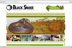 Black Snake Productions