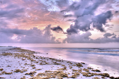 A Mustang Morning (countryphotoguy) Tags: beach gulfofmexico water beautiful clouds sunrise waves fineart countryimages