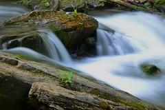DSC_9301 (Luella Maria) Tags: falls waterfalls decew