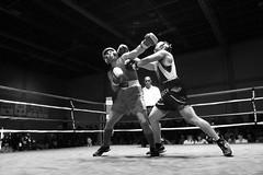 2CR Boxing Smoker (pvanorden (back home)) Tags: blackandwhite sports fight boxing fighters vilseck canonef1635mmf28lusm rosebarracks canoneos7d 2ndcavalryregiment boxingsmoker