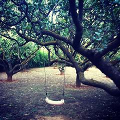 Κούνια μπέλα #lovely #garden