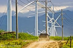 Bangui Windmills-004-_IGP7945 (IlocosNorte) Tags: travel tourism landscape windmills advertisement ilocos windfarm renewableenergy ilocosnorte bangui motorists intourism forthemole foradvertisement formotorists forjimei