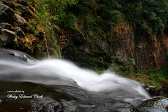 005 (Photos by Wesley Edward Clark) Tags: oregon silverton waterfalls scottsmills abiquacreek abiquafalls