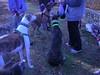 WorldsEnd11-20-2011020