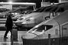 Montparnasse TGV (Thomas Rombauts) Tags: street blackandwhite bw man paris france station train europe platform railway luggage grayscale montparnasse iledefrance tgv régionparisienne parisregion