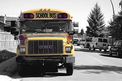 Yellow School Bus (TylerAWBurke) Tags: road street old school red urban orange white canada black colour bus calgary yellow nikon suburban nostalgia alberta vehicle suburb schoolbus gmc selective yellowschoolbus nostagic d7000