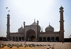 Jama Masjid (William J H Leonard) Tags: india building architecture buildings asian asia day pigeon delhi indian pigeons muslim islam sunny mosque newdelhi islamic islamicarchitecture southasia jamamasjid southasian olddelhi mughal mughalarchitecture shahjahanabad asianarchitecture masjidijahānnumā