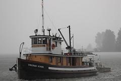 ex tug VIKING KING (agent1320) Tags: tugboat tug vikingking
