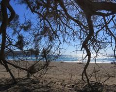 Kommos Beach 8 (David Audiovend) Tags: beach nude greece crete naturist greececrete kommos kommosbeach