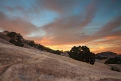Sunset Sunday (tagakodak) Tags: california autumn trees sunset fall clouds creek bay twilight oak lafayette hiking path hill walnut ridge trail area eastbay beacon pleasant wisp contracosta drygrass ridgetop goldenhills msoriano vision:sunset=096 vision:mountain=051 msorianophotography