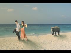 two less lonely people in the world (frozenjester) Tags: portrait selfportrait elephant beach photoshop nikon singapore couple fullframe nikkor fx prewedding 2470mm d700 jesteralcaraz frozenjester