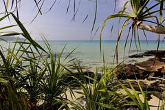 _MG_0627 (Tam Church) Tags: travel sea sun fish beach island cambodia kayak snorkel bbq kong barbeque cooked koh rtw