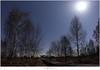 Jupiter en de maan (5D319393) (nandOOnline) Tags: bomen nederland natuur jupiter peel hemel berk limburg landschap ster maan sterren planeet sterrenbeeld maanlicht grootepeel sterrenbeelden berkenbomen sterrenhemel ospeldijk knuppelbrug