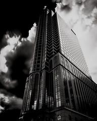 Modern Day Cathedrals (josesuro) Tags: bw film architecture tampa tampabay florida 4x5 largeformat 2010 tmax100 ebonysv45ti jaspcphotography josesuro