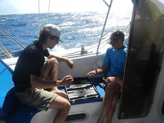 Intense Mid-Atlantic Backgammon (Sail Van Kedisi) Tags: ocean door boy sea man game male men water hat sailboat sailing crossing play cross hats cockpit games atlantic catamaran sail passage backgammon