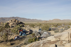 Sheep Pass Campground (Joshua Tree National Park) Tags: camping nationalpark picnic joshuatree tent campground joshuatreenationalpark sheeppass