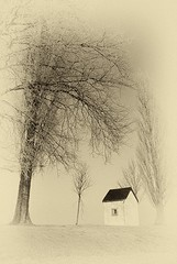 A little chapel in a Winterlandscape (jo.misere) Tags: winter white art kunst sony belgi alpha kerken