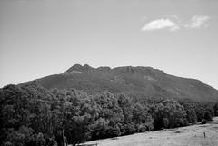 Projection Bluff (Kent Holloway) Tags: au australia tasmania goldenvalley leicam6 fujiacros100 summicron35mm