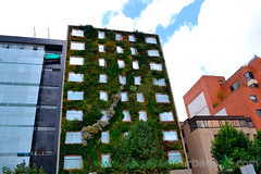 Fachada vegetal Hotel B3 en Bogot (www.paisajismourbano.com) Tags: hotel plantas colombia bogot gaia jardines patente jardn b3 jardnvertical jardinesverticales fachadavegetal ignaciosolano fachadasvegetales ecosistemavertical