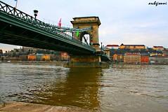 budapest (archgionni) Tags: city bridge water reflections river hungary fiume budapest ponte riflessi città ungheria danubio
