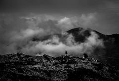 Nuages de Valle (Frdric Fossard) Tags: nature montagne alpes lumire pierre arbre brouillard rocher brume coldebalme hautesavoie aiguillesrouges massifdumontblanc