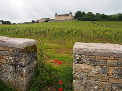 Wine tasting at Chateau Rully near Beaune in Burgundy (heatheronhertravels) Tags: cruise france burgundy titan beaune rivercruise uniworld chateaurully