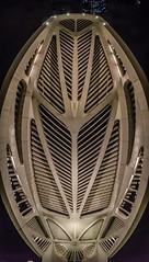 Museu do Amanhã (mcvmjr1971) Tags: santiago arquitetura riodejaneiro calatrava praça mauá lenstokina 1116mmf28 nikond7000 museudoamanhã mmoraes tomorrowmeseum