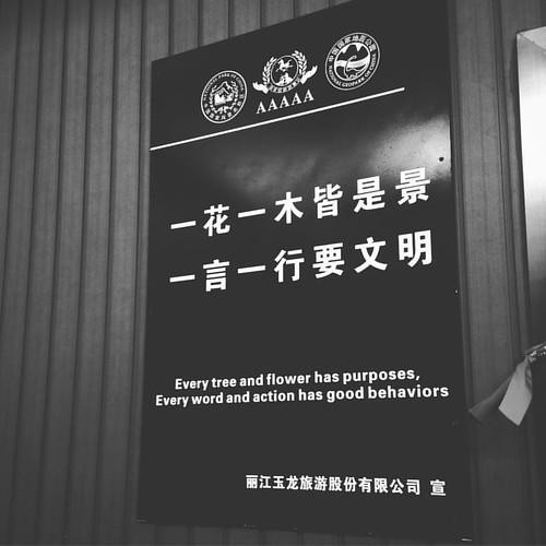 Tuesday's thought. #Chinglish #jadedragonsnowmountain