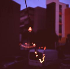 Light Bulbs (Mel Enc) Tags: california 120 6x6 mamiya tlr film analog mediumformat iso100 losangeles slide slidefilm 120film velvia transparency 100 filmcamera twinlensreflex mamiyasekor 80mmf28 c330f