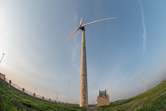**** (xhowardlee) Tags: cloud white plant green mill ecology windmill grass station wheel electric force power wind politics taiwan conservation environmental fisheye generator shore future production environment taichung coastline taipei tall agriculture propeller protection turbine ecological  105mm gaomei