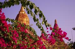 IMGP7435 (Montre ce qu'il voit!) Tags: colors landscape gold golden julien asia pentax couleurs burma religion buddhism myanmar asie mm paysage budda vidal k5 birmanie boudhisme myanmarbirmanie mandalayregion