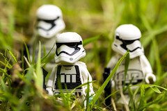 Stormtroopers on patrol (jezbags) Tags: white macro green canon lego 100mm stormtrooper patrol macrophotography 60d canon60d macrolego macrodreams