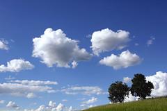 Wolkenstimmung ber dem Mhlviertel (rubrafoto) Tags: sommer wolken bume baum wetter stimmung mhlviertel ottensheim wolkenstimmung ooe witterung wolkenhimmel grnland wetterbild sommerlandschaft