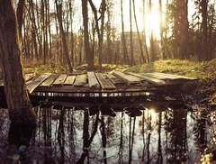 Bridge Awkward (trm42) Tags: morning bridge sea panorama nature water sunrise suomi finland spring pond helsinki dof meri lauttasaari silta kevt aamu