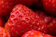 Juicy (@richlewis) Tags: macro fruit kent strawberry canterbury extensiontube fujifilmxt1 fujifilmmcex16 fujinonxf90mmf2rlmwr fujifilmmcex11 fujinonteleconverterxf14xtcwr