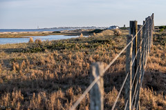 Campitos (Picardo2009) Tags: trip travel viaje autumn lighthouse fence landscape faro uruguay countryside autum country campo maldonado picoftheday puntadeleste joseignacio campaa lagunagarzon flickrtravelaward